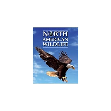 Cavendish Square Publishing North American Wildlife Workbook By Kinsey, Brian, Grade 7 - Grade 12 [eBook]