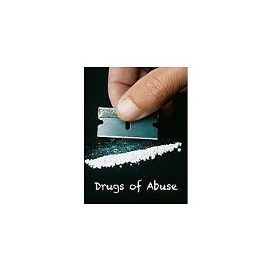 Cavendish Square Publishing Drugs Of Abuse Workbook By Kinsey, Brian, Grade 8 - Grade 12 [eBook]