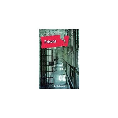 Cavendish Square Publishing Prisons Workbook By Burlingame, Jeff, Grade 8 - Grade 12 [eBook]