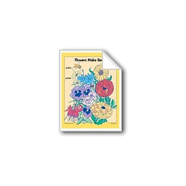 Evan-Moor Educational Publishers Plants: Seeds Workbook, Kindergarten - Grade 2 [eBook]