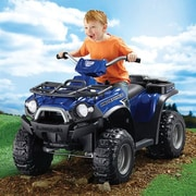 Fisher-Price® Power Wheels® Kawasaki Brute Force® Vehicle, Blue/Black, 3 - 7 Years (CDD20 )