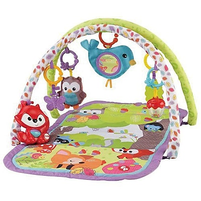 Fisher-Price 3-in-1 Musical Activity Gym, Woodland IM14T7380