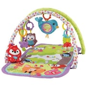Fisher-Price 3-in-1 Musical Activity Gym, Woodland