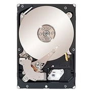 "Seagate® Constellation ES.2 ST33000650SS 3TB SAS 6 Gbps 3.5"" Internal Hard Drive"