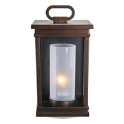 LNCHome Exterior 1-Light Wall Sconce