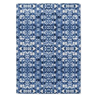 Kavka Blue/White Area Rug; 2' x 3'
