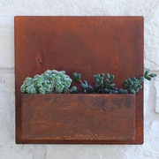 UrbanMettle Hip To Be Steel Wall Planter; Rust