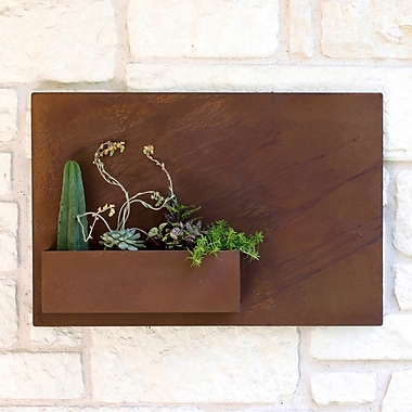 UrbanMettle Desert Rose Steel Wall Planter; Rust