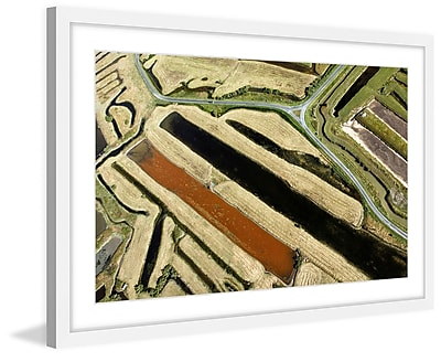 Marmont Hill 'Green Paths' Framed Painting Print; 30'' H x 45'' W x 1.5'' D