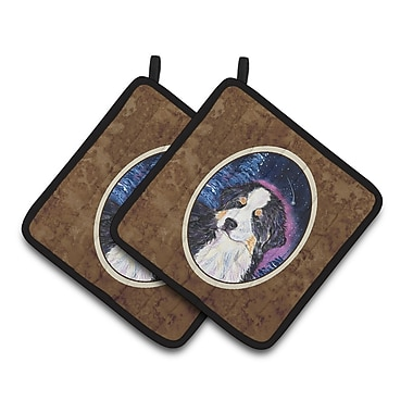 Caroline's Treasures Starry Night Bernese Mountain Dog Potholder (Set of 2)