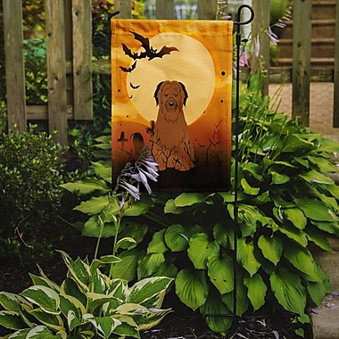 Caroline's Treasures Halloween Briard 2-Sided Garden Flag; Brown