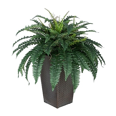 House of Silk Flowers Artificial Fern Floor Plant in Planter