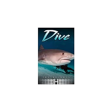 Saddleback Educational Publishing Dive Reading & Writing Workbook, Grade 5 - Grade 8 [eBook]