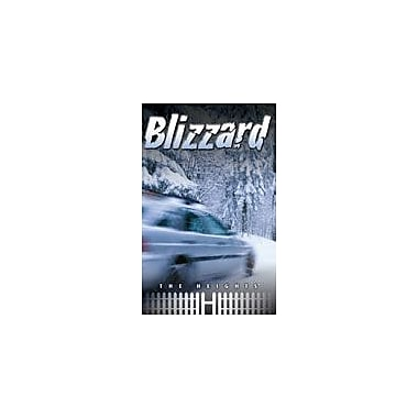 Saddleback Educational Publishing Blizzard Reading & Writing Workbook, Grade 5 - Grade 8 [eBook]