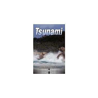 Saddleback Educational Publishing Tsunami Reading & Writing Workbook, Grade 5 - Grade 8 [eBook]