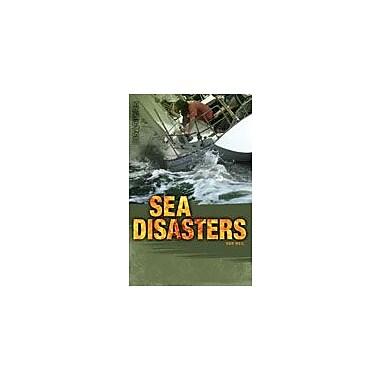 Saddleback Educational Publishing Sea Disasters Reading & Writing Workbook, Grade 9 - Grade 12 [eBook]