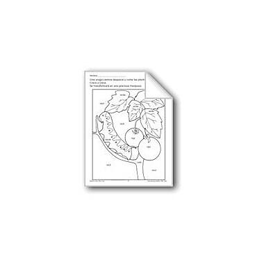 Evan-Moor Educational Publishers Color/Learn: Caterpillar Language Arts Workbook, Preschool - Grade 1 [eBook]