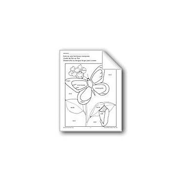Evan-Moor Educational Publishers Color/Learn: Butterfly Language Arts Workbook, Preschool - Grade 1 [eBook]