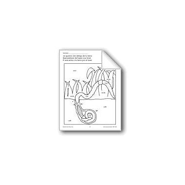 Evan-Moor Educational Publishers Color/Learn: Worm Language Arts Workbook, Preschool - Grade 1 [eBook]