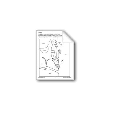 Evan-Moor Educational Publishers Color/Learn: Woodpecker Language Arts Workbook, Preschool - Grade 1 [eBook]