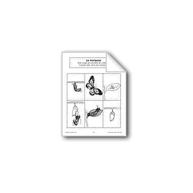 Evan-Moor Educational Publishers Sequencing: the Butterfly Language Arts Workbook, Preschool - Grade 1 [eBook]