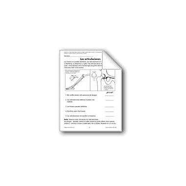 Evan-Moor Educational Publishers Joints/Las Articulaciones Language Arts Workbook, Grade 1 - Grade 3 [eBook]