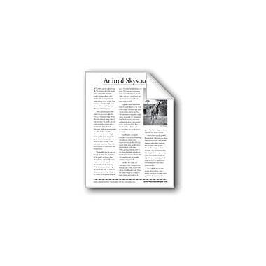 Evan-Moor Educational Publishers Animal Skyscrapers (Giraffes)/Rascacielos Del Reino Animal Workbook, Grade 4 - Grade 8 [eBook]