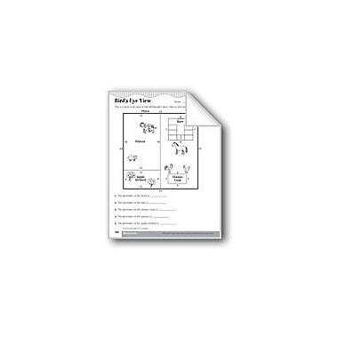 Evan-Moor Educational Publishers Bird's-Eye View (Perimeters of Polygons) Math Workbook, Grade 3 [eBook]