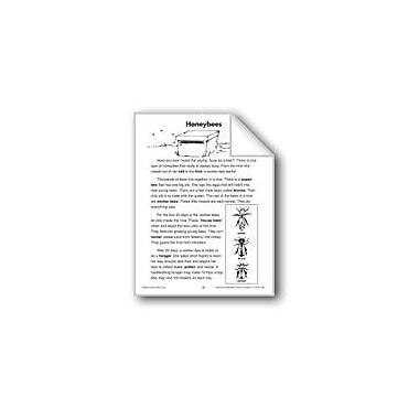 Evan-Moor Educational Publishers Honeybees (Life Science/Insects) Language Arts Workbook, Grade 2 - Grade 3 [eBook]