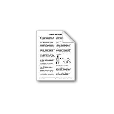 Evan-Moor Educational Publishers Turned to Stone (Earth & Space Science/Geology, Rocks) Workbook, Grade 3 - Grade 4 [eBook]