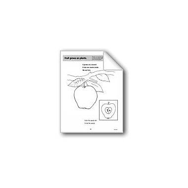 Evan-Moor Educational Publishers Fruit Grows On Plants Computers Workbook, Preschool - Grade 1 [eBook]