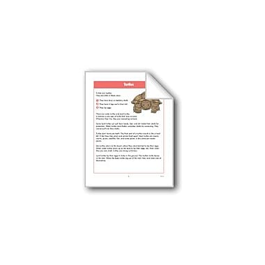 Evan-Moor Educational Publishers Turtles Computers Workbook, Grade 2 - Grade 4 [eBook]