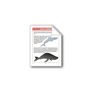 Evan-Moor Educational Publishers Sharks and Whales Computers Workbook, Grade 2 - Grade 4 [eBook]