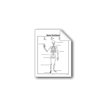 Evan-Moor Educational Publishers Name That Bone! Computers Workbook, Grade 2 - Grade 3 [eBook]