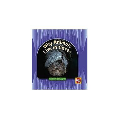 Gareth Stevens Publishing Why Animals Live In Caves Science Workbook, Grade 1 - Grade 4 [eBook]