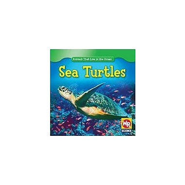 Gareth Stevens Publishing Sea Turtles Science Workbook, Kindergarten - Grade 2 [eBook]