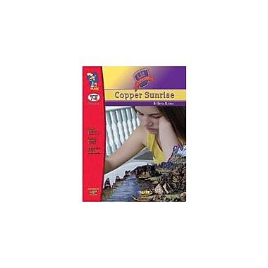 On The Mark Press Copper Sunrise Lit Link: Novel Study Guide Language Arts Workbook, Grade 7 - Grade 8 [eBook]