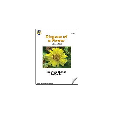 On The Mark Press Diagram of A Flower Lesson Plan Science Workbook, Grade 2 - Grade 3 [eBook]