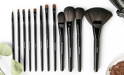 All Dolled Up Professional Makeup Brush Set - 12 Pieces