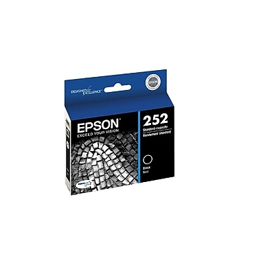 Epson DuraBrite T252120-D2 Ultra Black Ink Cartridges, 2/Pack