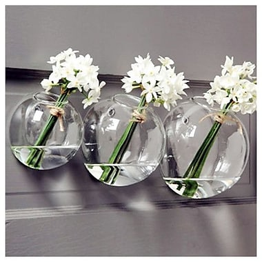 Bungalow Rose 24 Piece Glass Bubble Bowl/Hydroponic Plant Terrariums Wall D cor Set