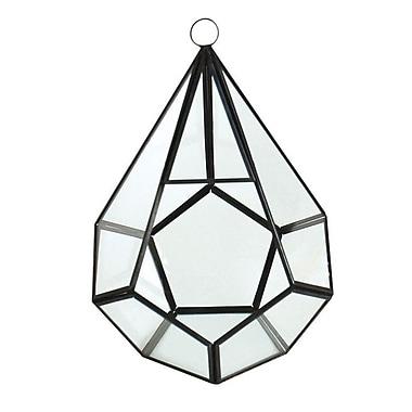 CYSExcel Glass Terrarium Planter (Set of 12)