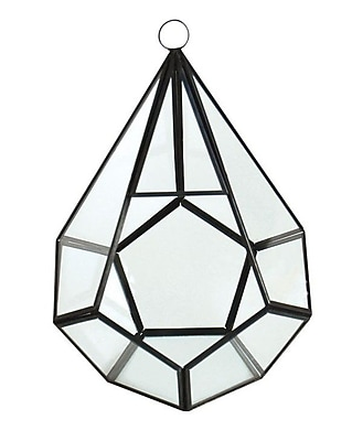 CYSExcel Glass Terrarium (Set of 12)