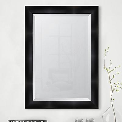 Melissa Van Hise Black Resin Frame Wall