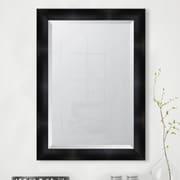 Melissa Van Hise Black Resin Frame Wall Mirror; 42.5'' H x 30.5'' W x 1.5'' D