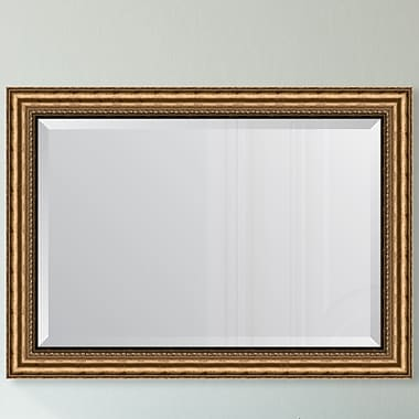 Melissa Van Hise Antique Gold Resin Frame Wall Mirror; 34.75'' H x 28.75'' W x 1.5'' D