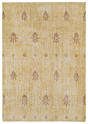 Bungalow Rose Koh Gold Area Rug; 8' x 10'