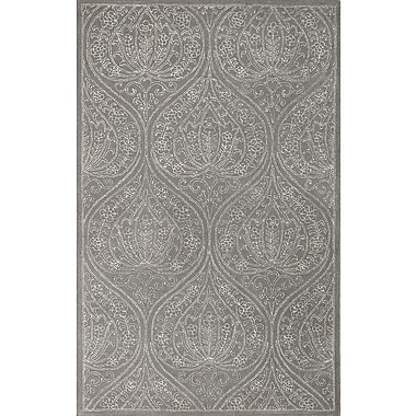 AMER Rugs Serendipity Steel Oxford Gray Area Rug; 5' x 8'