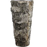 CYSExcel Table Vase (Set of 24)