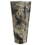 CYSExcel Table Vase (Set of 12)